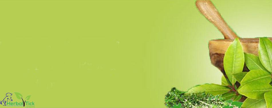 Obat Herbal Bukan Pestisida Maupun Insektisida