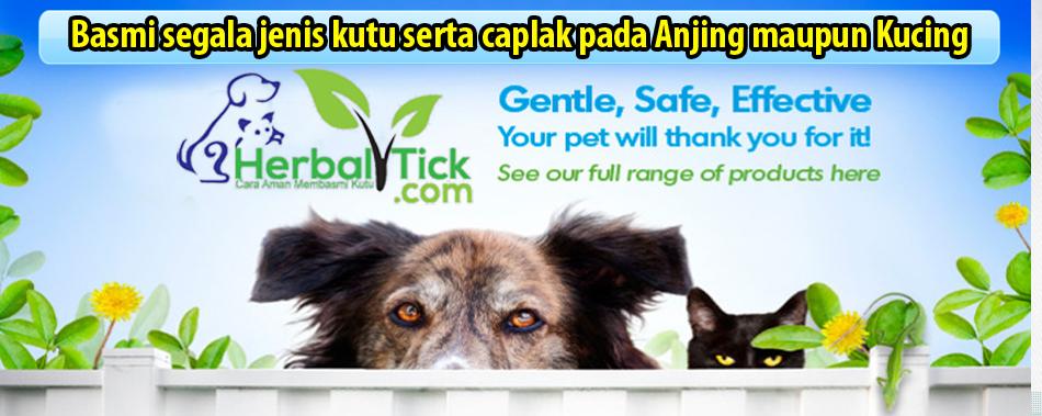 Obat Anti Kutu HERBAL Untuk Anjing dan Kucing